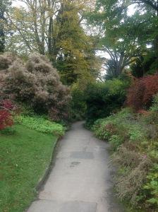 Bath Botanic Garden